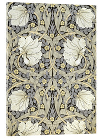 Acrylic print  Pimpernell - William Morris