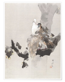 Premium poster  Pigeons in a Tree - Watanabe Seitei