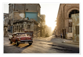 Premium poster  Vintage car on the streets of Havana - Novarc