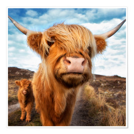 Premium poster  Highland cattle with calf - Westend61
