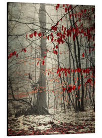 Aluminium print  Winter forest with last leaves - Westend61