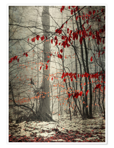 Premium poster Winter forest with last leaves