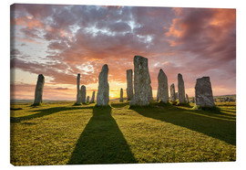 Canvas print  The plants of Callanish - age fotostock