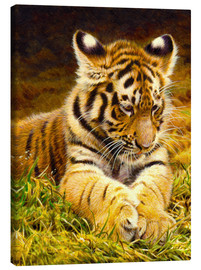 Canvas print  Young tiger lying in grass