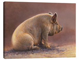 Canvas print  Pig in the wallow