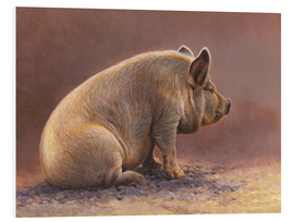 Forex  Pig in the wallow