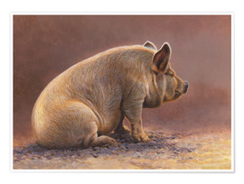 Premium poster  Pig in the wallow