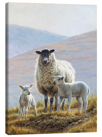 Canvas print  Little sheep family