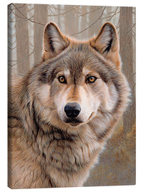 Canvas print  North American Wolf - Ikon Images