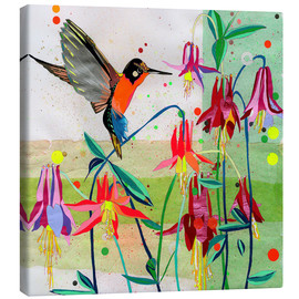 Canvas print  Hummingbird and Columbine - Ikon Images