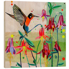 Wood print  Hummingbird and Columbine - Ikon Images