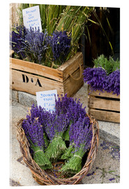 Acrylic print  Baskets with lavender bouquets - Brenda Tharp