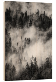 Wood print  Black and white pine forests - Judith Zimmerman