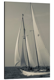 Aluminium print  Sailboat in the wind at Cape Ann - Walter Bibikow