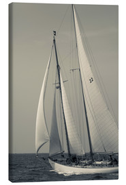 Canvas print  Sailboat in the wind at Cape Ann - Walter Bibikow