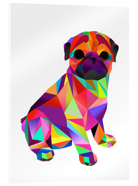 Acrylic print  Molly Pug - Miss Coopers Lounge