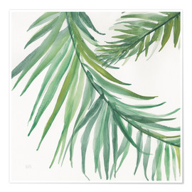 Premium poster Fern leaves IV