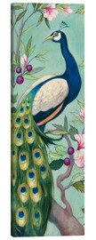Canvas  Pretty Peacock II - Julia Purinton