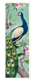 Premium poster  Pretty Peacock II - Julia Purinton