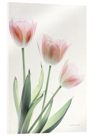 Acrylic print  Light and Bright Floral II - Elizabeth Urquhart