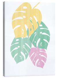 Sarah Adams - Monstera III Bright on White