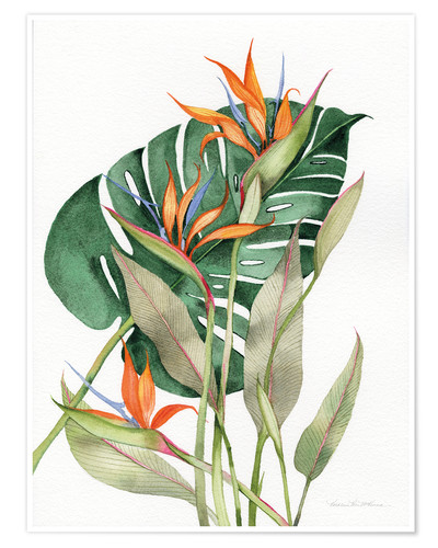 Premium poster Botanical: Birds of paradise