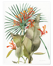 Premium poster Botanical Flame Lilies