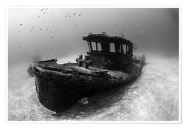 Premium poster A tugboat wreck in the Bahamas