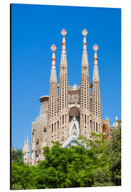 Aluminium print  La Sagrada Familia church in Barcelona - Neale Clarke