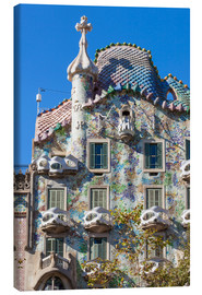 Canvas print  Facade of the Casa Batllo, Barcelona - Neale Clarke