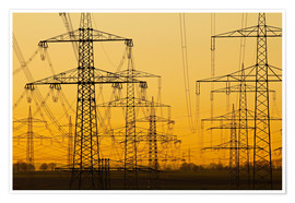 Premium poster Pylons and power lines in morning light
