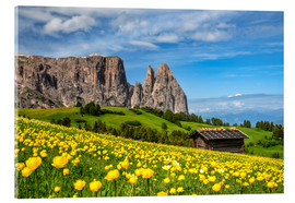 Acrylic print  Spring on the Alpe di Siusi in South Tyrol - Achim Thomae