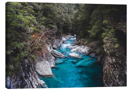 Canvas print  Blue pools, Mount Aspiring National Park - Nicky Price