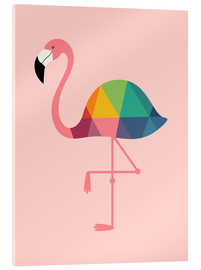 Acrylic print  Rainbow flamingo - Andy Westface