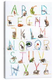 Canvas print  Animal ABC - Nadine Conrad