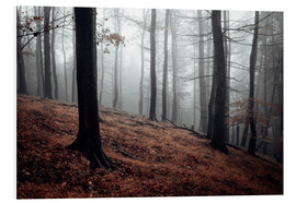 Foam board print  Mystical fog in the resin forest - Oliver Henze