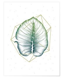 Premium poster  Geometry and nature II - Barlena