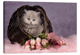 Canvas print  Cute cat kid in the basket - purple dreams - Janina Bürger