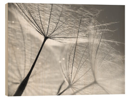 Wood print  Dandelion Umbrella in black and white - Julia Delgado
