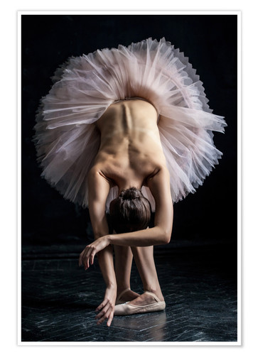 Beautiful Ballerina Bows Posters And Prints Posterlounge Com