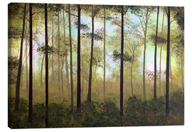 Canvas print  Forest morning - Herb Dickinson