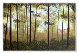 Premium poster Forest morning