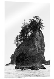 Acrylic print  Rocks at Second Beach in Olympic National Park, USA - Peter Wey