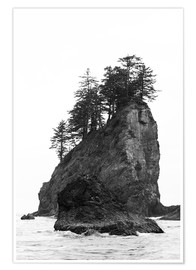 Premium poster  Rocks at Second Beach in Olympic National Park, USA - Peter Wey