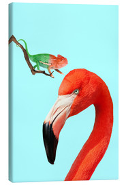 Canvas print  COLORFUL FRIENDS - Jonas Loose