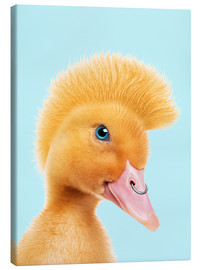 Canvas print  REBEL DUCKLING - Jonas Loose