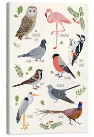 Canvas print  Bird species (German) - Kidz Collection