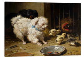 Acrylic print  A Bichon Frise and a King Charles Spaniel - Henriette Ronner-Knip