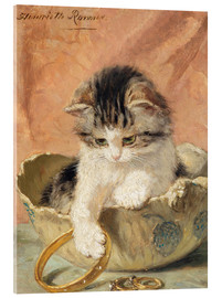 Acrylic print  a kitten playing with jewelry - Henriette Ronner-Knip