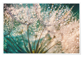 Premium poster  Dandelion dropper dream - Julia Delgado